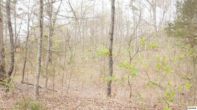 Lot 12 Flatwood Rd., Sevierville, TN 37862 (#221625) :: Colonial Real Estate