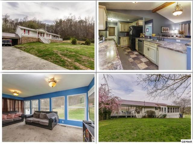 272 Old Lake City Hwy, Rocky Top, TN 37769 (#221628) :: The Terrell Team