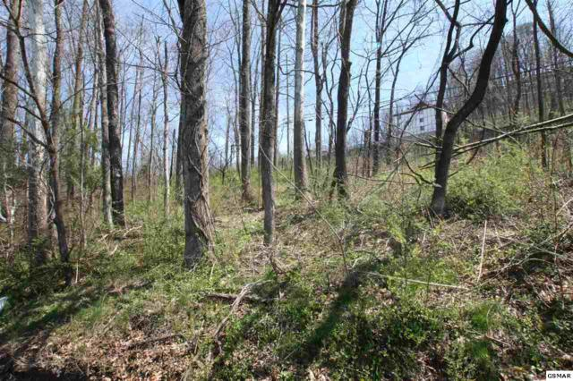 Lot 26 Mccarter Rd, Gatlinburg, TN 37738 (#221640) :: Colonial Real Estate