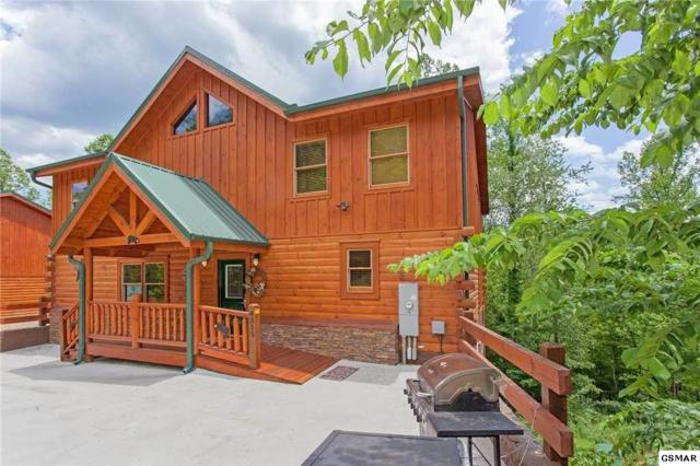4315 Forest Ridge Way Beary Dee-Light, Pigeon Forge, TN 37863 (#221650) :: The Terrell Team