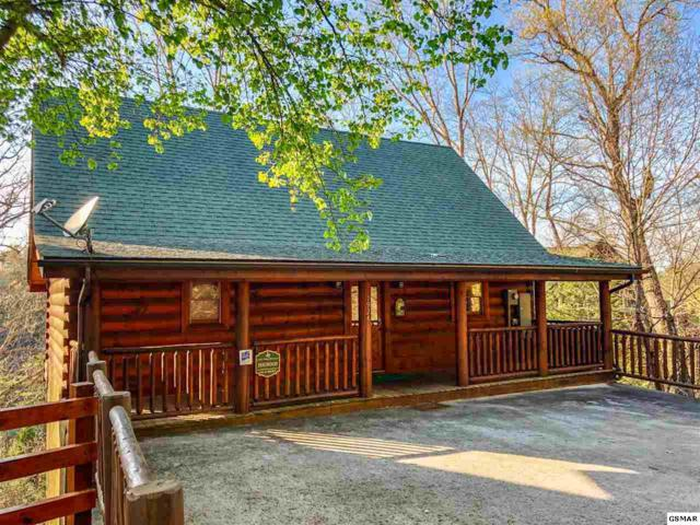 1924 Cougar Crossing Way, Sevierville, TN 37876 (#221658) :: The Terrell Team