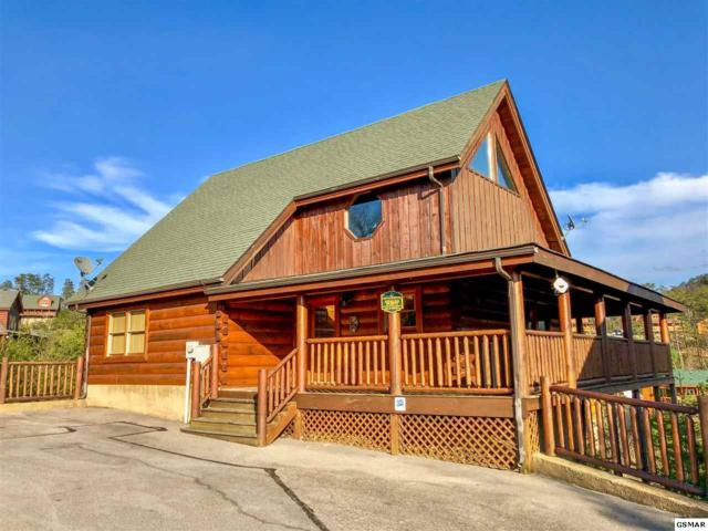 1948 Cougar Crossing Way, Sevierville, TN 37876 (#221664) :: The Terrell Team