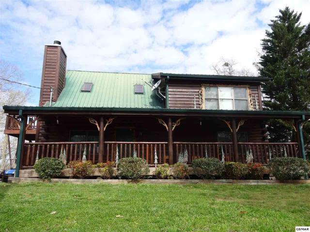 1495 Tranquility Trl, Dandridge, TN 37725 (#221674) :: Colonial Real Estate
