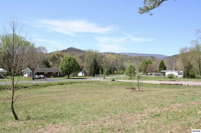 Greasy Cove Rd, Cosby, TN 37722 (#221761) :: Prime Mountain Properties