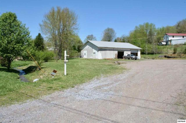 110 Greasy Cove Rd, Cosby, TN 37722 (#221762) :: Prime Mountain Properties