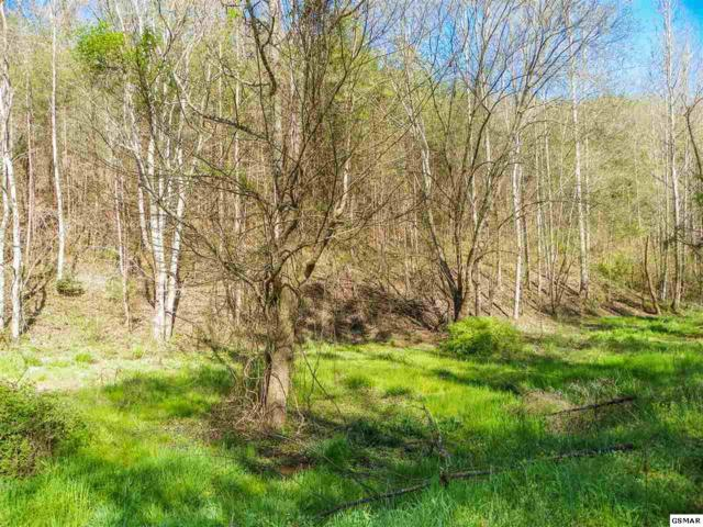 Lot# 20 Licking Spring Way, Sevierville, TN 37876 (#221781) :: Four Seasons Realty, Inc