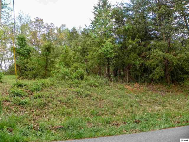 Lot# 17 Valley Woods Drive, Sevierville, TN 37862 (#221808) :: The Terrell Team