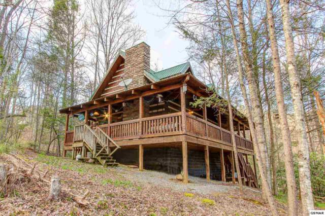 2845 Grassy Branch Road, Sevierville, TN 37876 (#221826) :: The Terrell Team