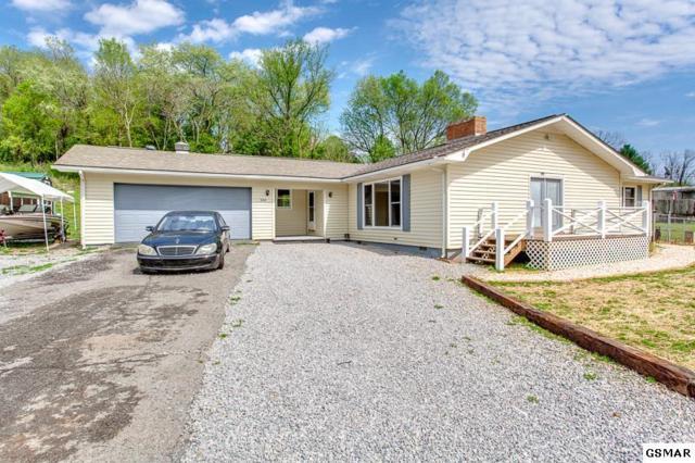 1777 Eureka Rd, Rockwood, TN 37854 (#221839) :: Colonial Real Estate
