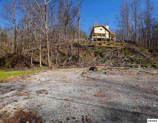 667 Turkey Nest Road #407, Gatlinburg, TN 37738 (#221843) :: Colonial Real Estate