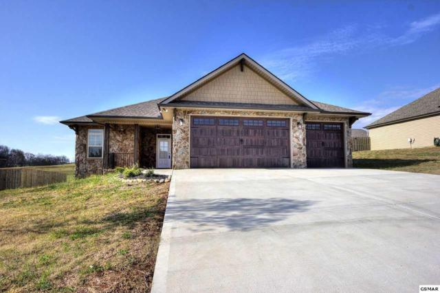 2249 Frewin Ct, Sevierville, TN 37876 (#221862) :: The Terrell Team
