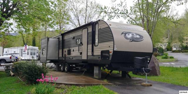 Lot 53 4229 East Parkway, Gatlinburg, TN 37738 (#221876) :: SMOKY's Real Estate LLC