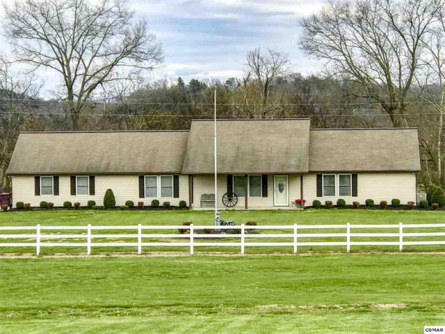 135 Transport Drive, Newport, TN 37821 (#221879) :: SMOKY's Real Estate LLC