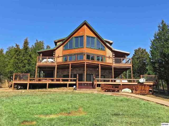 1251 Cobblestone Lane, Dandridge, TN 37725 (#221883) :: SMOKY's Real Estate LLC