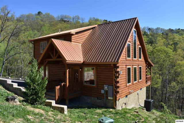 2079 Windy Lane, Sevierville, TN 37876 (#221887) :: Colonial Real Estate