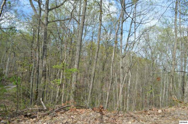 Lot 50 Estates Drive, Seymour, TN 37865 (#221890) :: The Terrell Team