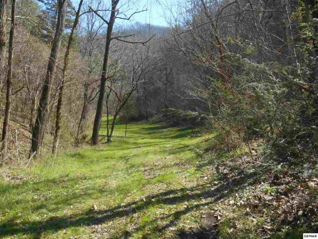 Misty Mountain Way, Sevierville, TN 37876 (#221891) :: Colonial Real Estate