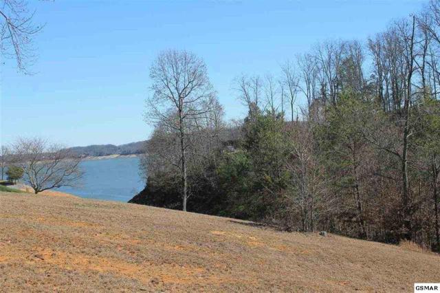150 Scenic Shores Dr, Dandridge, TN 37725 (#221895) :: SMOKY's Real Estate LLC