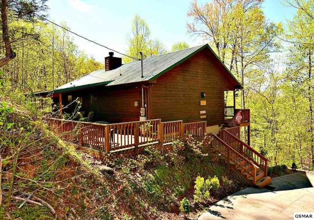 "1636 Lamons Loop Road ""A Bear Trax"", Sevierville, TN 37876 (#221897) :: The Terrell Team"