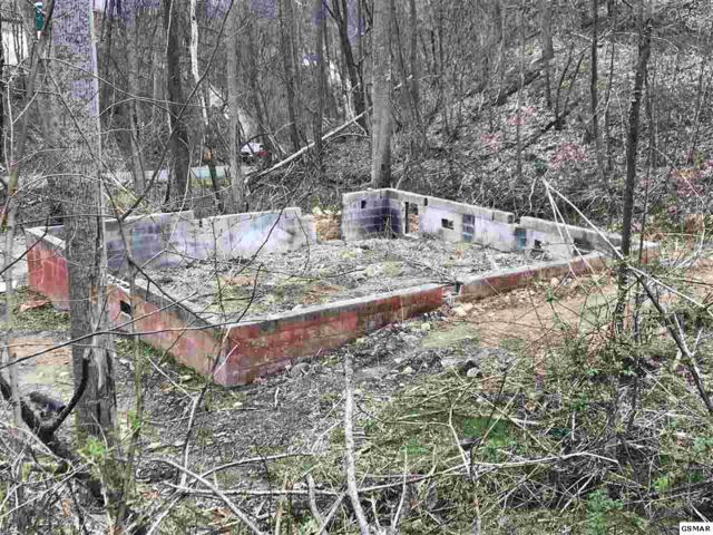 459 Wiley Oakley, Gatlinburg, TN 37862 (#221907) :: SMOKY's Real Estate LLC