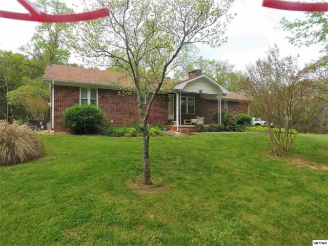 130 Skyline Drive, Newport, TN 37821 (#221919) :: SMOKY's Real Estate LLC