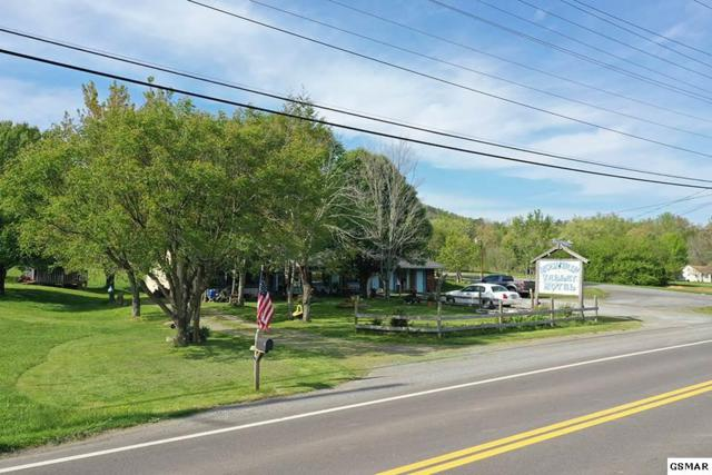 3804 Wears Valley Rd, Sevierville, TN 37862 (#221930) :: Billy Houston Group