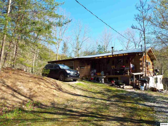 3087 Mica Way 062.04 & 062.05, Cosby, TN 37722 (#221933) :: SMOKY's Real Estate LLC