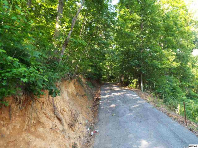 Parcel 062.02 Greasy Cove Road Parcel 062.03 G, Cosby, TN 37722 (#221935) :: SMOKY's Real Estate LLC