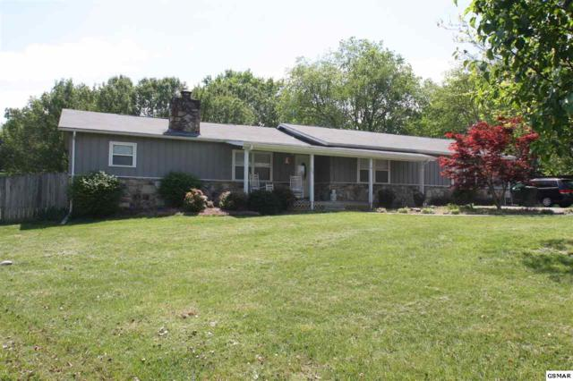 104 Hemlock Court, Sevierville, TN 37862 (#221939) :: Colonial Real Estate