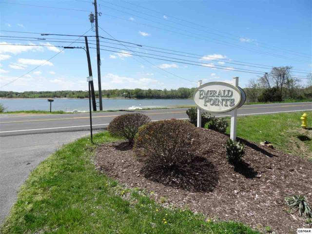 lot27,84,85 IVY Way, Newport, TN 37821 (#221941) :: SMOKY's Real Estate LLC
