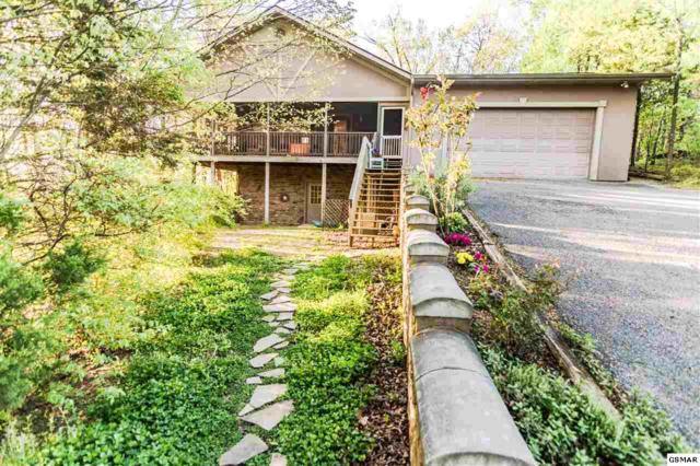 440 Spicer Ln, Sevierville, TN 37862 (#221945) :: Colonial Real Estate