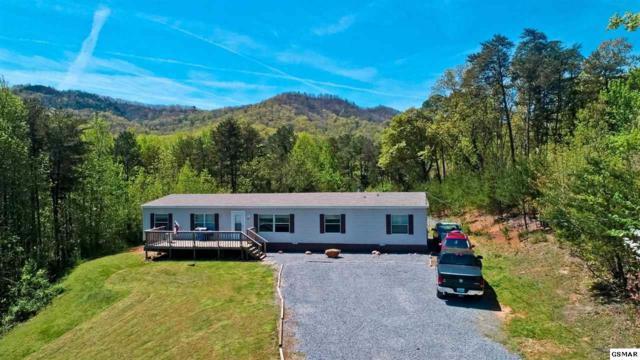 583 Overview Way, Newport, TN 37821 (#221948) :: SMOKY's Real Estate LLC
