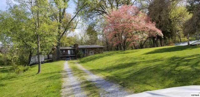 129 Sugar Hollow Rd, Pigeon Forge, TN 37863 (#221953) :: The Terrell Team