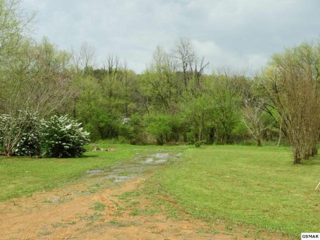 4961 Bogard Rd 4963 Bogard Rd., Cosby, TN 37722 (#221954) :: Colonial Real Estate