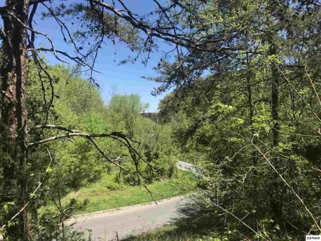 Lot 1 Pheasant Ct, Sevierville, TN 37725 (#221995) :: Prime Mountain Properties