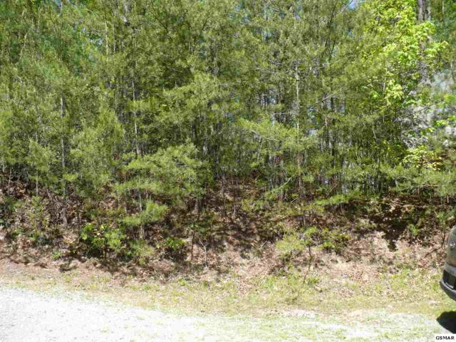 Lot #10 Teaberry Hill Way Sevierville, Sevierville, TN 37862 (#222007) :: Prime Mountain Properties