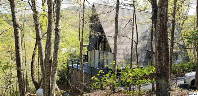 1223 Lower Alpine Bywy, Gatlinburg, TN 37738 (#222010) :: Prime Mountain Properties