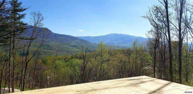 915 Deer Path Ln, Gatlinburg, TN 37738 (#222021) :: The Terrell Team