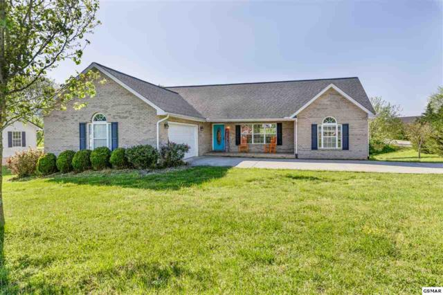 4237 Pea Ridge Road, Maryville, TN 37804 (#222027) :: Prime Mountain Properties