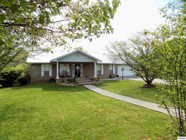 893 Forgety Rd, Jefferson City, TN 37760 (#222028) :: Prime Mountain Properties