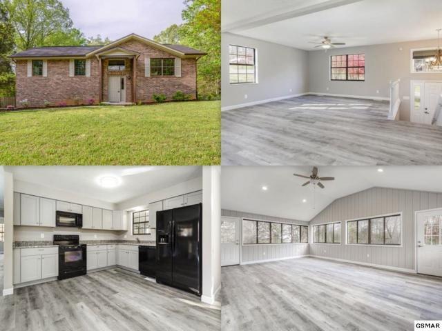 1115 Chestnut Ridge Dr, Lenoir City, TN 37771 (#222049) :: Prime Mountain Properties