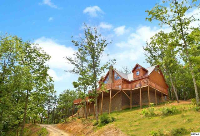 904 Autumn Ridge Way, Sevierville, TN 37876 (#222121) :: Prime Mountain Properties