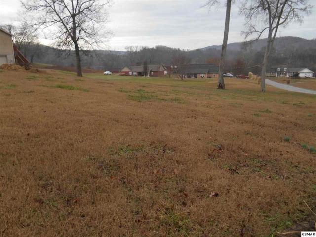Bend View Ln, Serville, TN 37876 (#222124) :: Colonial Real Estate