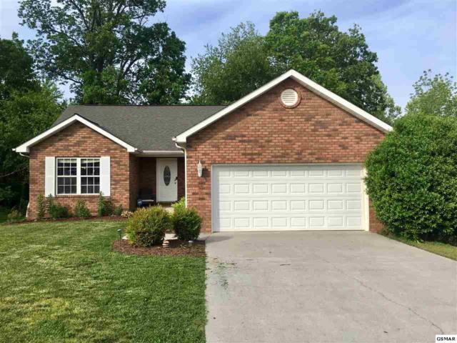 1624 Chicory Ct, Maryville, TN 37801 (#222157) :: Prime Mountain Properties