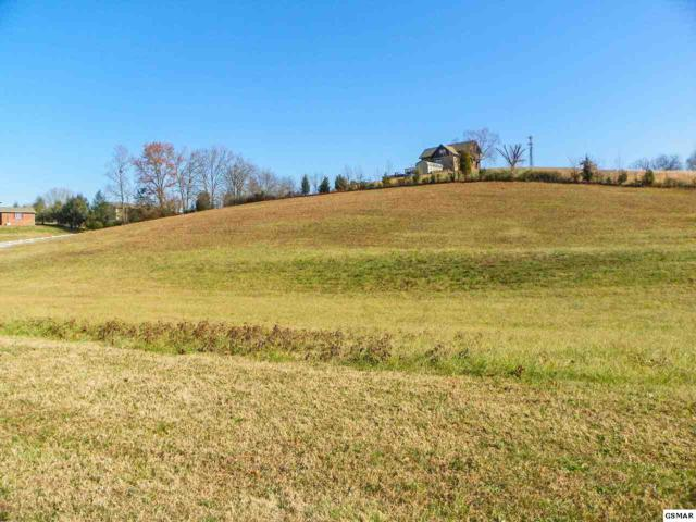 Lot 3R1 Sugarwood Drive, Kodak, TN 37764 (#222168) :: Prime Mountain Properties