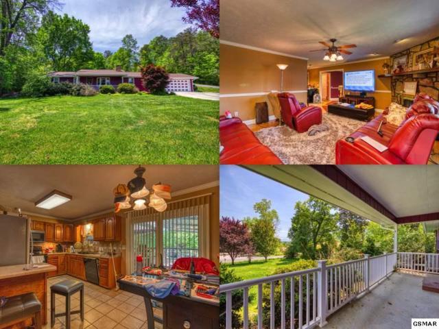 3006 Lona Drive, Sevierville, TN 37862 (#222172) :: Prime Mountain Properties