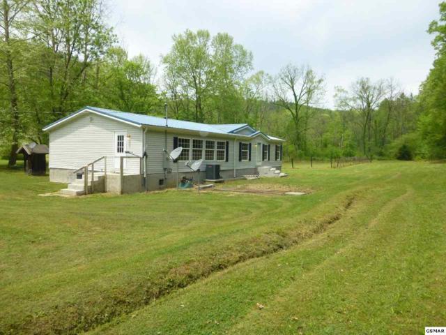 4754 Bogard Rd, Cosby, TN 37722 (#222178) :: Prime Mountain Properties