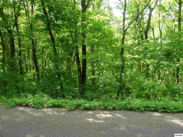 Lot 27 Farmers Mtn Ln, Kodak, TN 37764 (#222220) :: Prime Mountain Properties