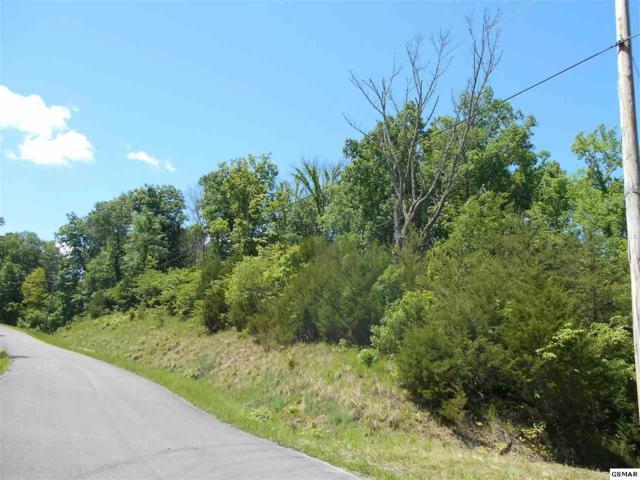Lot 52 Fork Horn Ln, Dandridge, TN 37725 (#222225) :: The Terrell Team