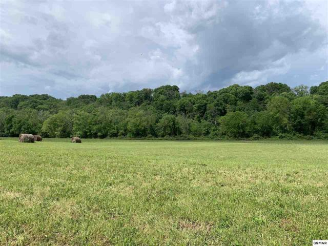 Lot 16-R1 Secluded River Circle, Parrottsville, TN 37843 (#222234) :: The Terrell Team